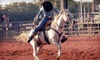 Rocky Mountain Horse Expo - National Western Complex: Tickets to Special Events at the Rocky Mountain Horse Expo (Half Off). Four Options Available.
