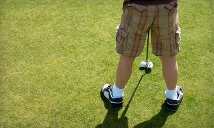 GreenToTee Golf Academy - Glencoe: One-Hour Lesson or One Week of Youth Golf Camp at GreenToTee Golf Academy in Glencoe