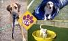 The Barking Zone Dog Daycare - Alabaster-Helena: $10 for One Full Day of Dog Daycare at The Barking Zone Dog Daycare ($20 Value)