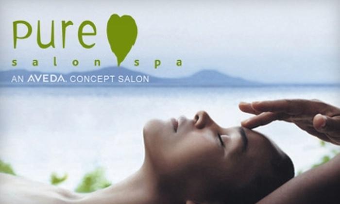 Pure Salon Spa - Irvington: $89 for a Spa Package at Pure Salon Spa ($180 Value)