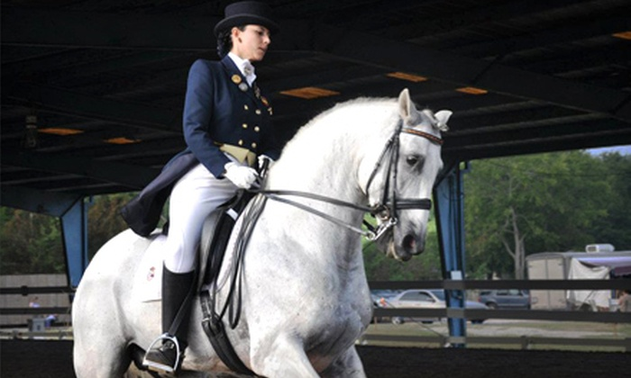 Woodlands Equestrian Club - Northwest Harris: $89 for Three One-Hour Horseback-Riding Lessons at Woodlands Equestrian Club in Tomball ($180 Value)