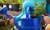 Lockwood Farms - Stanhope: $20 for $40 Worth of Plants and Landscaping Supplies at Lockwood Farms in Stanhope