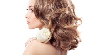 Adele Louise Beauty Studio: Wash, Cut and Blow-Dry with Conditioning Treatment or Highlights at Adele Louise Beauty Studio (Up to 62% Off)