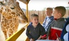 Out of Africa, Wildlife Park - Camp Verde: Out of Africa Wildlife Park Outing for Two or Four in Camp Verde (Up to 53% Off)