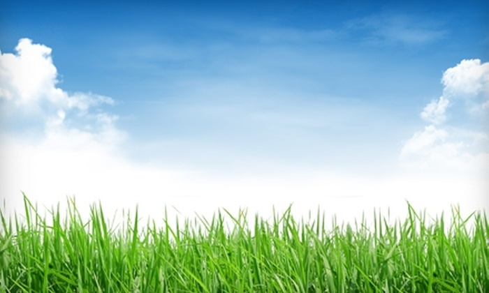 Barrier Lawn Care - Chevy Chase: $49 for a Spring Lawn-Care Treatment from Barrier Lawn Care ($121 Value)