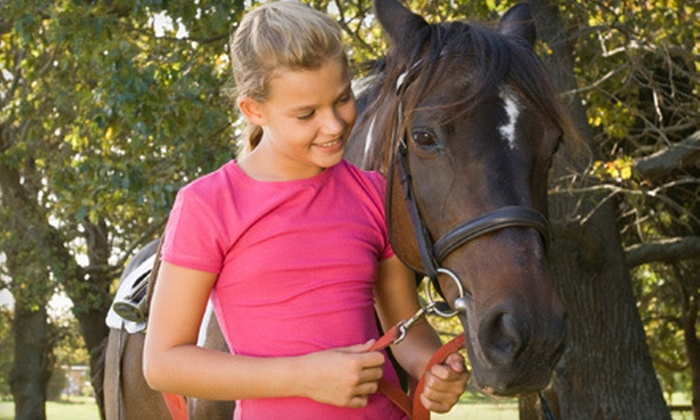 Sol Events - Baird: Group or Private Horseback-Riding Lessons at Sol Events in Baird (Up to 52% Off)