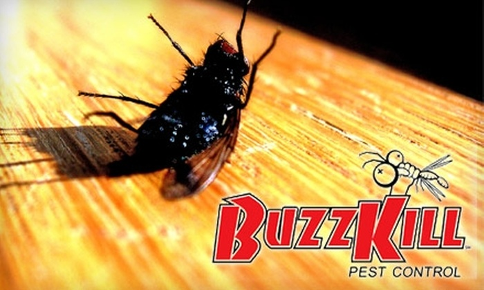 Buzz Kill Pest Control - Fort Worth: $34 for a One-Time Inside Spray and a Granular Perimeter Treatment with a 60-Day Guarantee from Buzz Kill Pest Control ($89.95 Value)