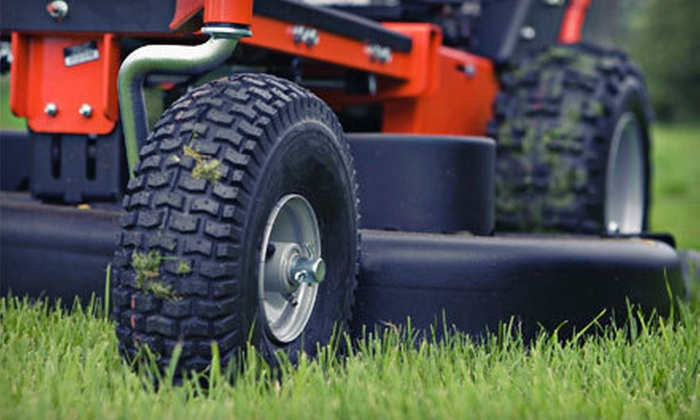 Green Thumb Lawn Care - Amarillo: Lawn Maintenance from Green Thumb Lawn Care (Up to 54% Off). Five Options Available.