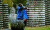 Route 40 Paintball Park - White Marsh: Paintball Package for Two or Four at Route 40 Paintball Park (Up to 46% Off)