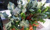 Harvest to Home Store: Vegetable or Herb Package with Delivery and Installation from Harvest To Home (Up to 52% Off)