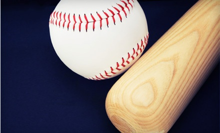 Baseball Batting-Cage Package (a $65 value) - Ultimate Baseball Academy in Omaha
