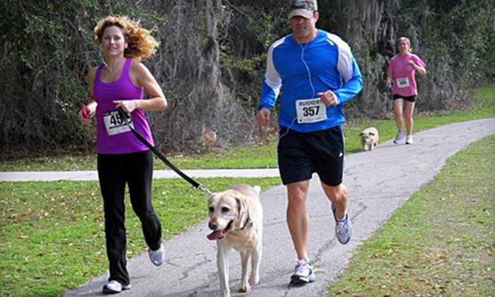University Commons 5K-9 - Gainesville: $17 for University Commons 5K-9 Race Entry Benefitting Pet Charities on February 25 (Up to $35 Value)
