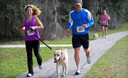 University Commons 5K-9 on Sat., Feb. 25 - University Commons 5K-9 in Gainesville