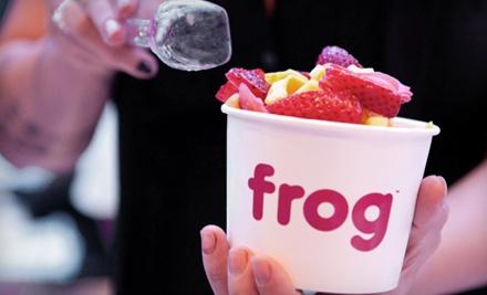 $10 Groupon - Frog Frozen Yogurt Bar in Hollywood