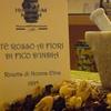 Visita al Herborarium Museum