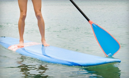 2-Hour Guided Paddleboard Tour (a $70 value) - Miami Beach Water Adventures in Miami Beach