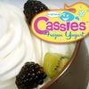 $5 for Frozen Yogurt at Cassie's