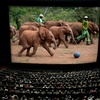 Up to 52% Off IMAX Movie Night for Two