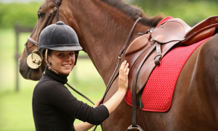 West End Equestrian Center - Gainesville: One-Hour Horseback Lesson or a One-Hour Trail Ride for One, Two, Three, or Four People at West End Equestrian Center