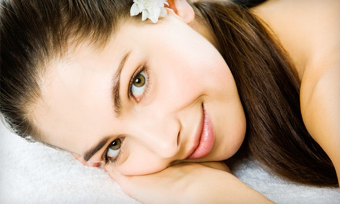 Rochester Esthetics Body Spa - Downtown Rochester: Three Eyebrow Waxes or a One-Hour Facial at Rochester Esthetics Body Spa