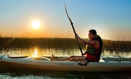 Guided Morning-and-Afternoon-Paddle Kayak Tour on Folly River for 1 Person (a $45 value) - Flipper Finders in Folly Beach