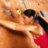 Kletterkurs und Tageskarten