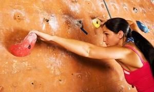 Move Kletterhalle: 1 Stunde Kletterkurs für 2 oder 4 Einsteiger inkl. Leihausrüstung und Tageskarten in der MOVE Kletterhalle ab 19,90 €