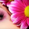 Up to 67% Off Lash or Brow Services in Plymouth