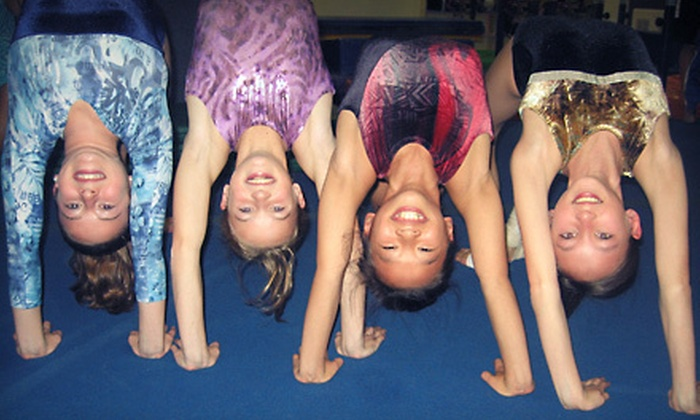 Tricks Gymnastics, Dance, and Swim - Multiple Locations: One Month of Dance or Gymnastics Classes at Tricks Gymnastics, Dance, and Swim (Up to 60% Off). Four Options Available.
