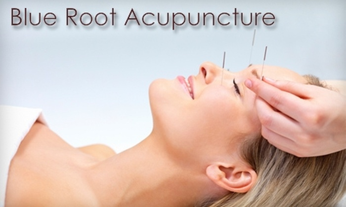 Blue Root Acupuncture - Lexington: $39 for One Acupuncture Treatment at Blue Root Acupuncture