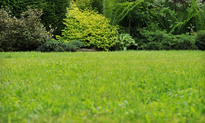 Green Unlimited - Centretown - Downtown: Spring Lawn Fertilization with Optional Weed Control from Green Unlimited (Up to 59% Off)