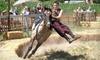 Cavallo Equestrian Arts presents Ma'Ceo 2012 - Ocala: $25 for Two Tickets to Ma'Ceo 2012 Equestrian Show ($50 Value)