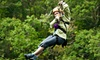 Wildman Adventure Resort **DNR** - Niagara: 2.5-Hour Ziplining Tour for One, Two, Four, Six, or Eight from Wildman Adventure Resort in Athelstane (Up to 56% Off)
