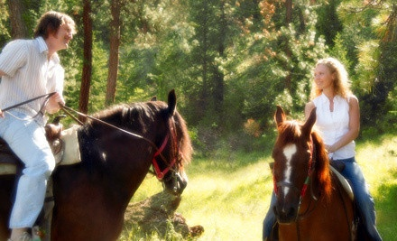 Horseback-Riding Package for 1 Including a 2.5-Hour Trail Ride and Dinner with Dessert and Wine (a $113 value) - Sleepy Sheep Ranch in Whitewright