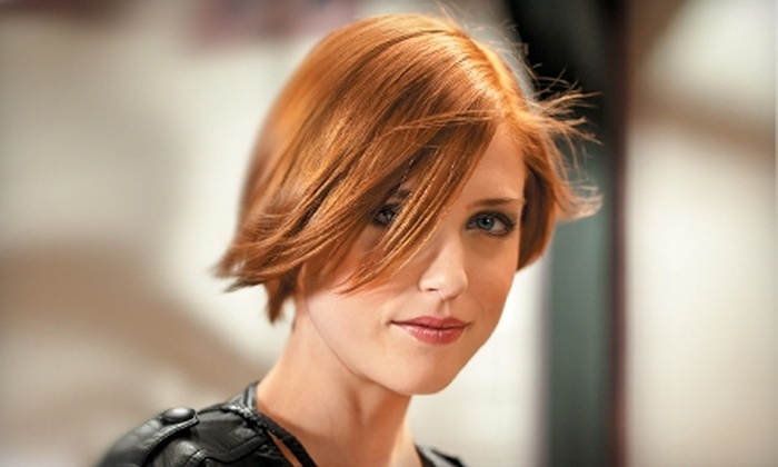 Hair Cuttery - Multiple Locations: $8 for an Adult or Child's Shampoo, Cut, and Blow-Dry (Up to a $23 Value) or $20 for $40 Worth of Color Services at Hair Cuttery