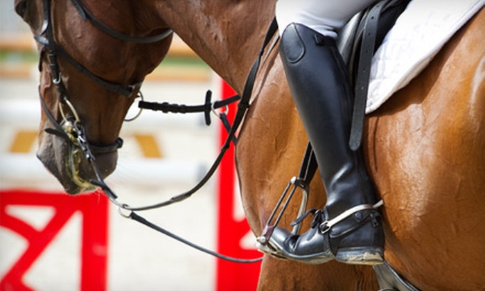 Majic Stables - Norman: Private Horseback-Riding Lesson or One-Month of Group Lessons at Majic Stables in Norman