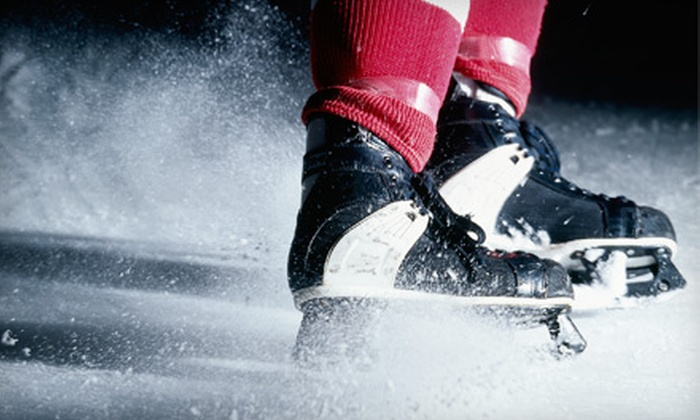 The Hockey Loft - Greenway-Chaplin: $11 for One Hour of Hockey or Ice-Skating Practice at The Hockey Loft in Cambridge ($28.25 Value)
