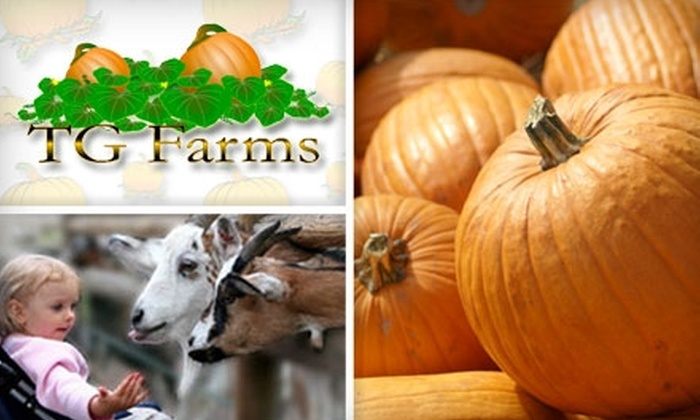 TG Farms - Multiple Locations: SOLD OUT: $8 for Two General-Admission Tickets to Pumpkin Patch and More at TG Farms ($17.44 Value)