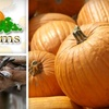 TG Farms: Season: Pumpkin Patch: 2 Locations - Multiple Locations: SOLD OUT: $8 for Two General-Admission Tickets to Pumpkin Patch and More at TG Farms ($17.44 Value)