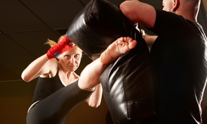 300 MMA Fitness: Five Classes or a One-Month Membership at 300 MMA Fitness (Up to 63% Off)