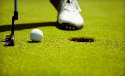 Unlimited 1-Month Pass to the Indoor Driving Range and Indoor Putting Green Access (a $75 value) - World of Golf in Florence