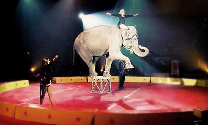Circus Mondo - Burton Cummings Theatre: $49 for a Circus Mondo Event for Four at MTS Centre on March 30 or 31 (Up to $134 Value). Four Shows Available.