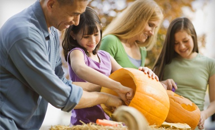 Keiki O Ka Aina Family Learning Centers: Family Package to the Pumpkin Carving Festival on Sat., Oct. 22 from 12-2PM or 3-5PM - Keiki O Ka Aina Family Learning Centers in Honolulu