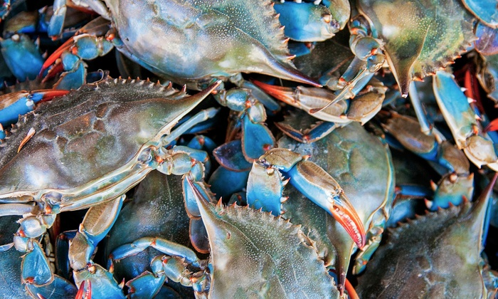 Chesapeake Crab Connection: Home-Delivered Crabs and Fresh Seafood from Chesapeake Crab Connection (Half Off). Two Options Available.