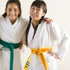 Up to 70% Off Karate or Krav Maga Classes