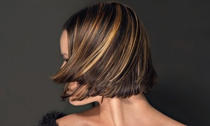 Reina Fischer at Elizabeth's Hair Design: Haircut with Root Touchup or Partial or Full Highlights with Reina Fischer at Elizabeth's Hair Design (Up to 56% Off)