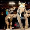 Al Menah Shrine Circus – Up to 52% Off Show