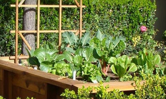 groOrganic - Laguna Beach: $59 for One-Hour Consultation and One-Year Garden Planner Subscription from groOrganic ($129 Value)