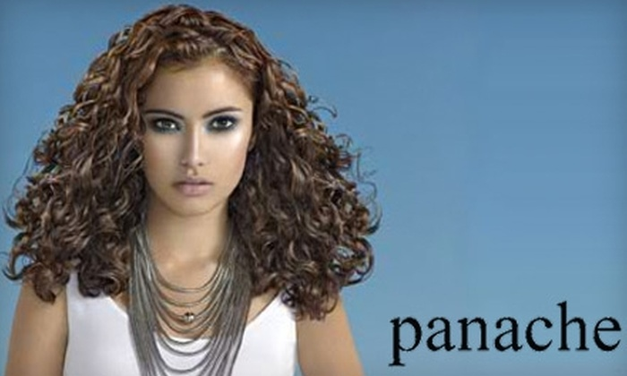 Panache Hair & Nails - Midtown: $40 for a Basic Hair Color Service, Blow Dry, and Style at Panache Hair & Nails ($82 Value)