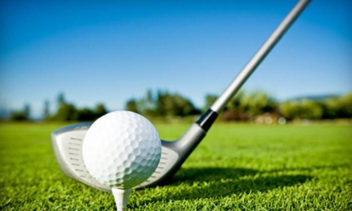 51 Off Private Golf Lessons The Better Golf Academy Groupon